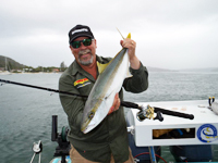 Pittwater Kingfish Charter