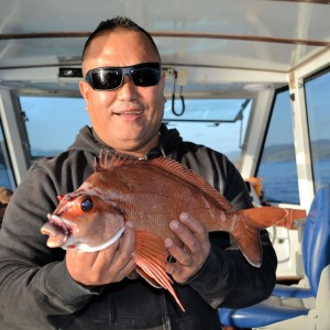 Reef Fishing Charter (Offshore – River Fishing)